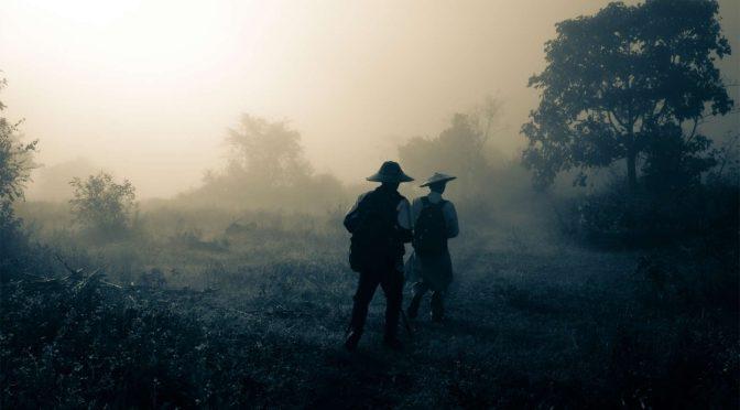 Myanmar Forest Fraud
