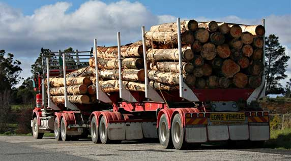 Get a harvesting audit for your timber security