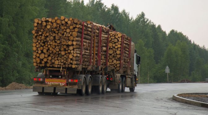 Timber and logging truck on the road