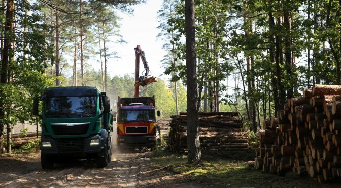 Loading a timber harvest onto a truck